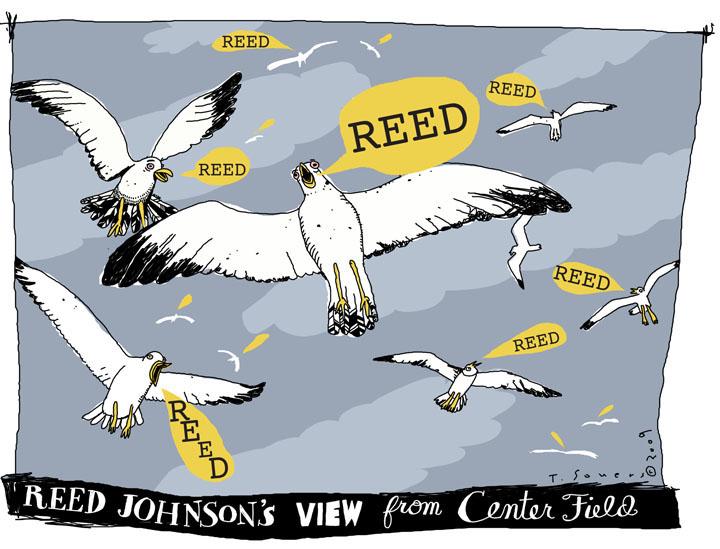 RJ.Seagulls