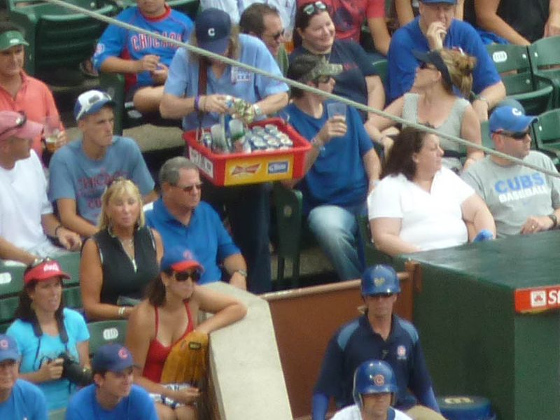 Wrigley Field, chicago cubs, Cub Fans, glove