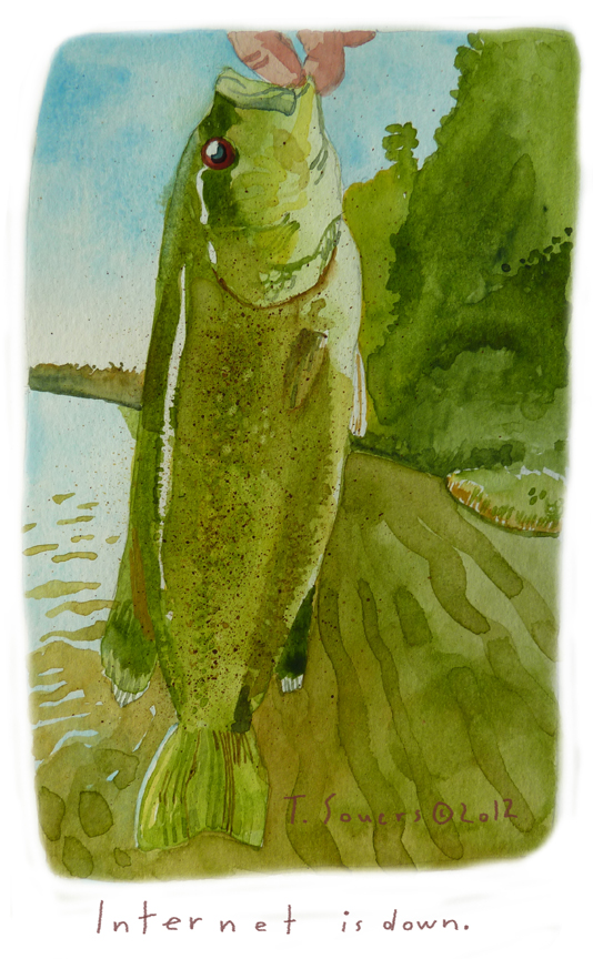 Bass,fishing,illustration,art