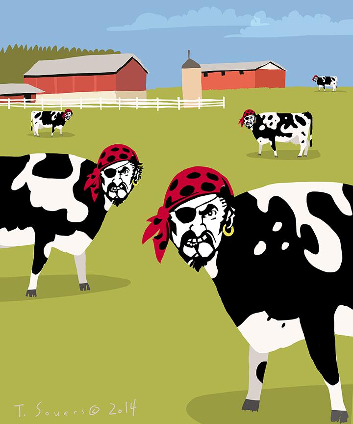 Pirate farm system