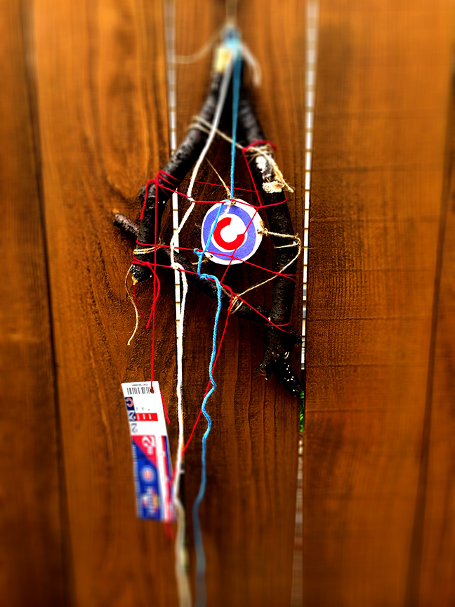 Dreamcatcher Cubs