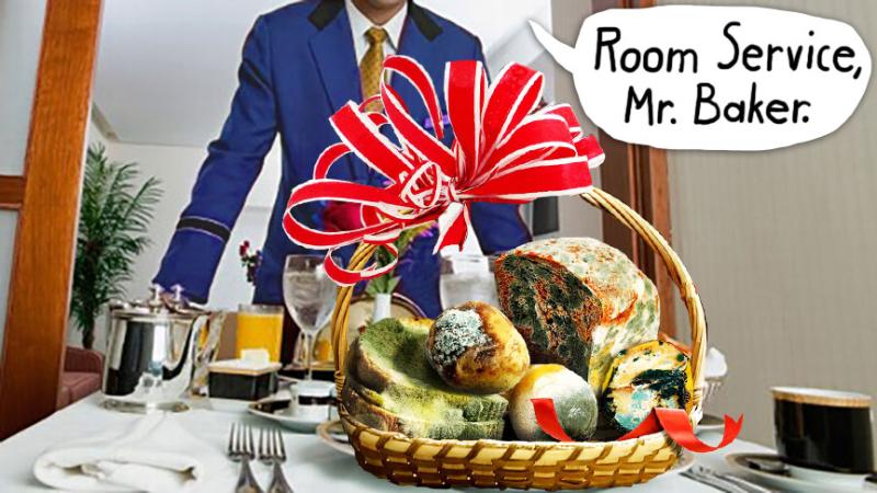 Moldy-room-service