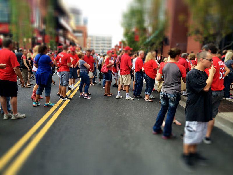 Cardinal fans