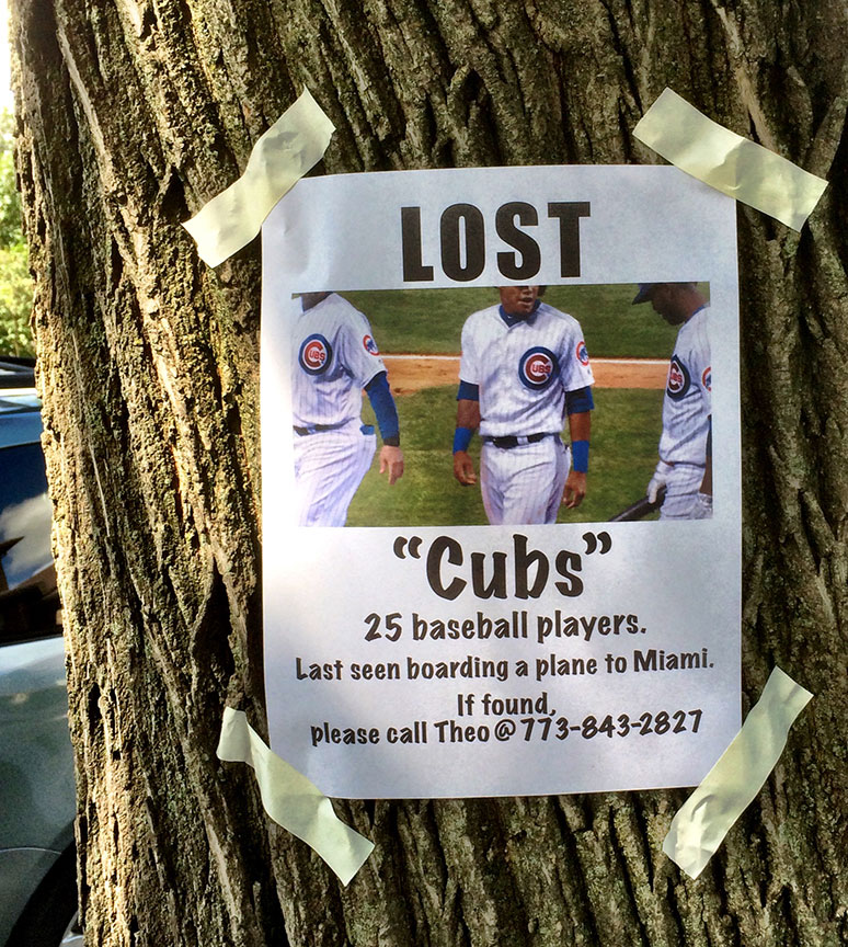 Cubs-Lost-Poster