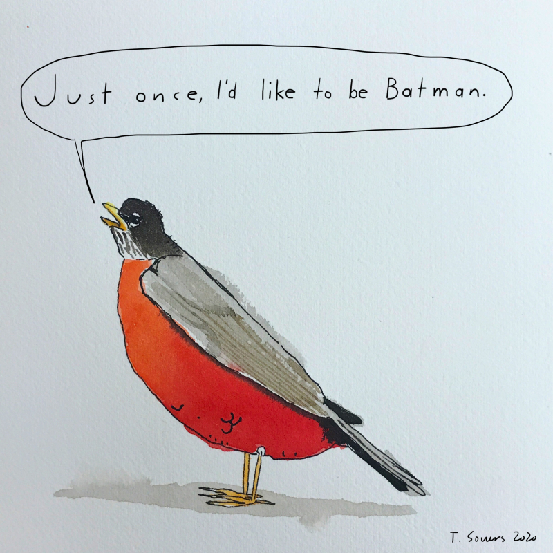 Robin wants to be batman